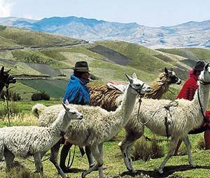voix_off_equateur_voyage_au_pays_des_quatre_mondes